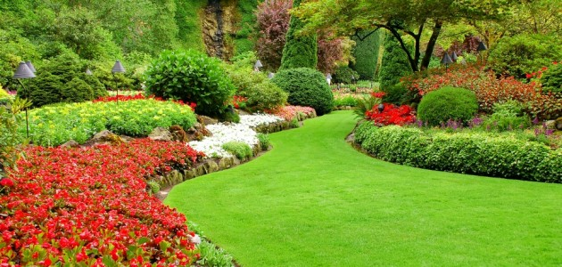 Gallery lawn care vinton va parkway lawns for Garden maintenance work